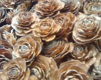 100 Cedar Rose Pinecones (single heads)  - Perfect For Rustic Country Weddings