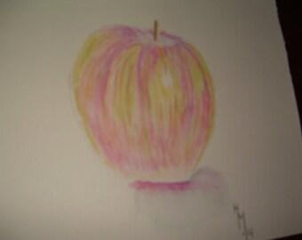 watercolor pencil apple drawing