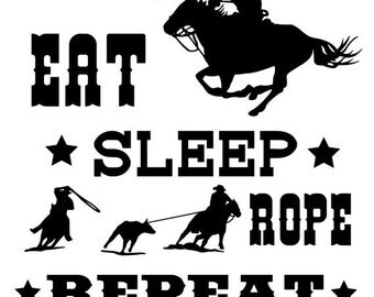 Horse, horse quote decal, rodeo, western wall decor, room decor, vinyl wall decor, 26 X 27 inches.