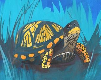 Turtle Illustration Art Print / Original Painting Art Print / Animal Painting / 8x10