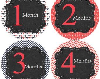 Monthly Baby Stickers Girl, Milestone Stickers, Month Stickers, Baby Month Stickers, Baby Stickers #124