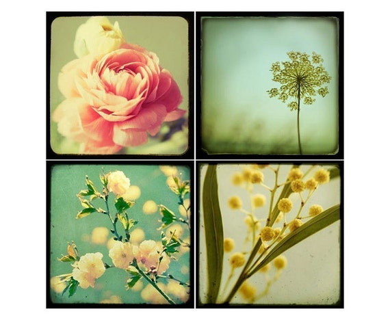SALE Flower Photography Collection, Floral Wall Art, Four Botanical Prints, Fine Art Photography, Nature Photography, Wall Decor
