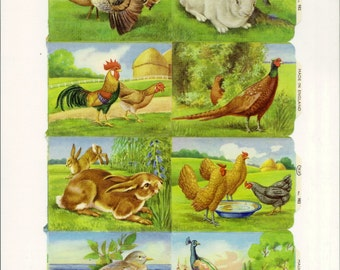 Vintage English Scrap - Garden Fowl and Rabbits for Paper Arts