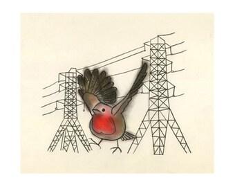 Robin bird art - Robzilla 4 for 3 SALE - 6 X 4 print