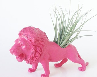 Lion Planter with Air Plant Room Decor, College Dorm Animal Ornament, Red, Pink, Blue Safari Animal, Geekery