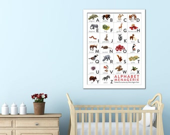 SALE Alphabet Poster - Needle Felted Animals (18x24)