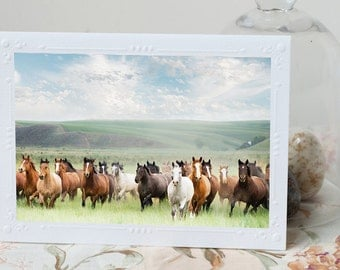 Running Horses Notecard - Horses in the Countryside, Photo Card, Blank Card, Stationery, Note Card
