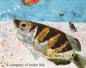 ARCHER FISH and BUTTERFLY, Brian Wildsmith illustration, tropical fish decor