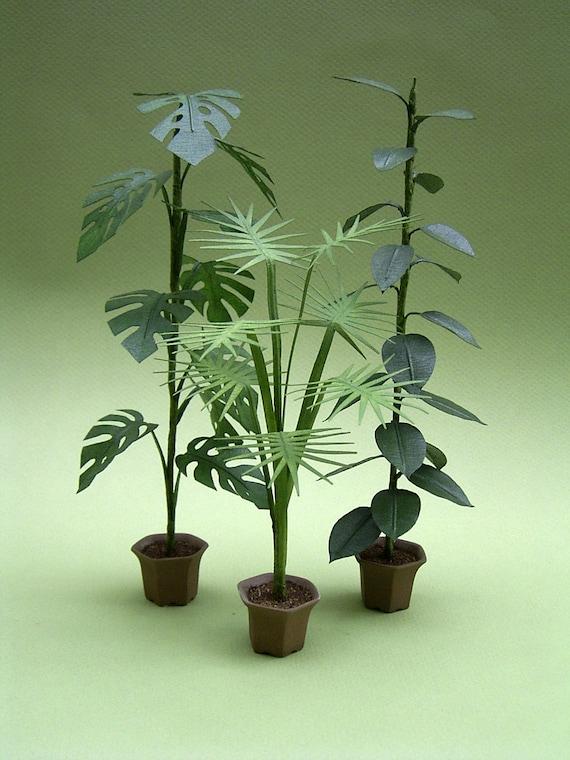 Hoja de instrucciones para grandes plantas de interior para for Plantas de interior hojas grandes