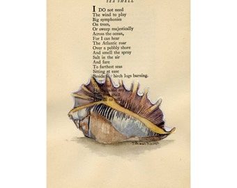 Sea shell -  Original Watercolor Painting  by Julia Raven - on Antique Book page - 5x8inches
