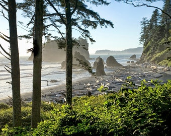 Ruby Beach on the Pacific Ocean in Olympic National Park in Washington State No.2 - a Fine Art Nautical Seascape Photograph