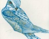 Fine Art Bird Print from Original Drawing Blue Blue Bird