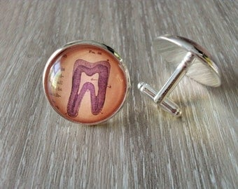 VINTAGE ANATOMY TEETH  Silver Cufflinks / The Tooth  / Gift for Him / Gift For Dentist / 2 Sizes to choose from / Dental Cufflinks / boxed
