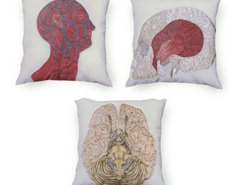 3 Anatomic Pillows set of the systems of the human head, Skull Pillow, Veins of the Head Pillow, Brain Pillow, Velveteen Pillow Cover Only