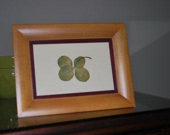 4 Leaf Clover in Vintage Frame