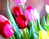 Beautiful Tulip Note Cards