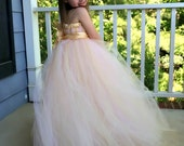 Flower Girl Tutu Dress Empire Waist Babydoll Style in Blush Pink with Champagne Satin Sash and Hair Clip CUSTOMIZABLE