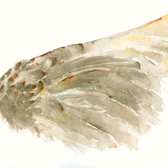 Birds Wing Fine Art Print from Original Watercolor Painting