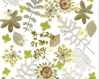 Wedding Table Decor Real Pressed flowers and leaves ,Silver and Green,  Silver Leaves,