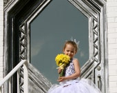 Starlite Dreams Couture Flower Girl  Corset Tutu Dress  SIZES 12M - girls 7