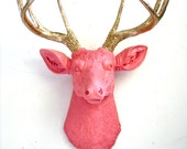 SALMON w/ Gold Antlers Faux Taxidermy Deer Head wall mount home decor in salmon with gold antlers: Deerman the Deerhead