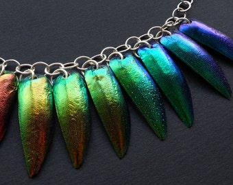 Jewel Beetle necklace, a rainbow of colour, unique beetlewing jewelry with Sterling silver chain