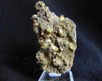 Mineral Specimen - Pyromorphite - Bunker Hill Mine, Kellogg, Shoshone Co., Idaho, USA  - Geology - NearEarthExploration