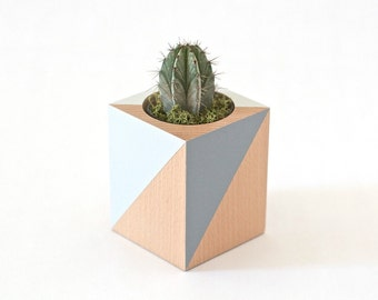 Woody planter - grey - for cacti and Succulents