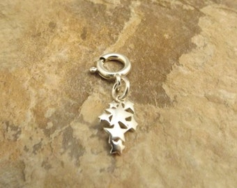Sterling Silver Cluster of Stars Charm on 8mm Sterling Silver Spring Ring - 2839