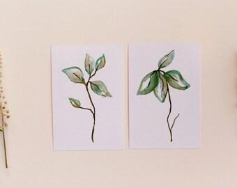 Set of 2 Botanical Leaf Prints