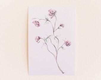 Any 1 Beautiful Botanical Print