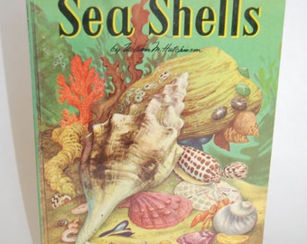 Vintage Children's Book, A Child's Book of Sea Shells