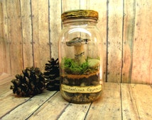 Mushroom Specimen - Phantasticus Gypsica - Raku Fired Ceramic - Mason Jar Terrarium - Preserved Moss - Handmade By Gypsy Raku