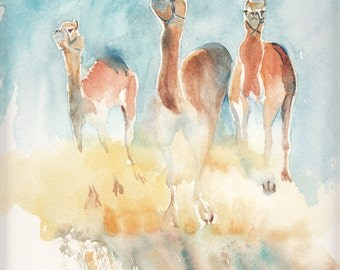 Animal Watercolor Cards Camel Cards  Childrens Cards Watercolour Greeting Cards Animal Blank  Notecard Set of four Unique Cards