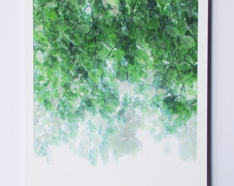 summer color print | 'untitled transparencies, tree canopy No.2'