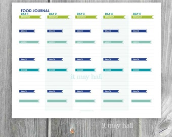 5 Day Food Journal Diary Instant Download Printable Organize Eat Healthy  PDF Blue Green  Food Diary Template Download