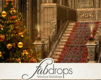 Christmas Photography Backdrop - Photo Background Is Perfect For Holiday Christmas Photoshoots (FD9013)