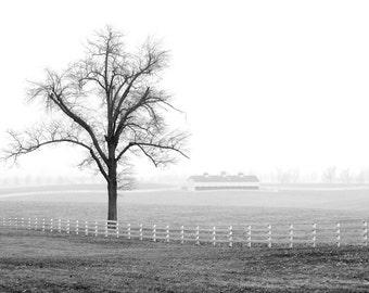Keeneland Horse Park, Bluegrass Region of Kentucky