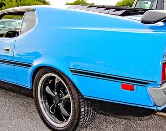 Boss 302 Ford Fastback Mustang Car Photography, Automotive, Auto Dealer, Classic, Sports Car, Mechanic, Boys Room, Garage, Dealership Art