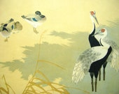 Vintage Japanese Print Bird Magazine Insert Painting