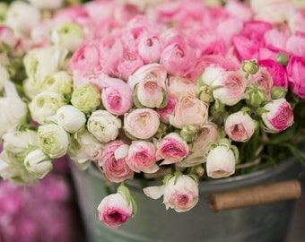 Paris Photography -  Pink and White Ranunculus at a Paris Market, French Home Decor, Large Wall Art,