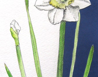 Daffodil cutout original watercolor painting with pen and ink