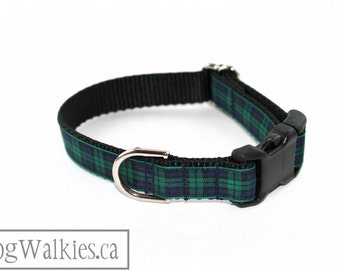 "Green Edge Black Watch Tartan Dog Collar - 3/4"" (19mm) wide - Green and Navy Plaid - Martingale or Side Release - Choice of style and size"