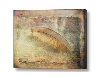 Zen Still Life Bird Feather Nature Tranquil Peaceful Soft Muted Colors and Texture Fine Art Photography on Large Giclee Gallery Wrap Canvas