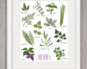 Herb poster | Etsy