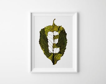 Monogram Letter E – Autumn Leaf – Art Photography – Initial Print – Nature Lover – Fall Wall Art – Gift for Him – 21 x 30 cm or 30 x 40 cm