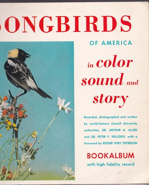 Songbirds of America in Color Sound and Story Bookalbum - Dr. Arthur A. Allen and Dr. Peter P. Kellogg - 1954 - Vintage Book