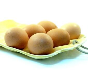 Deviled Egg Plate - Egg Holder - Platter for eggs, oysters, clams, appetizers - Easter Egg Dish  - Square Design