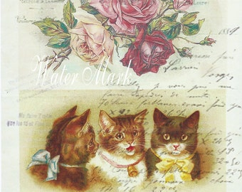 Digital download intant*Cats three*French script roses collage*300 dpi* decoupage, collage,sewing.ornaments