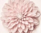 Flower Print, Fine Art Photograph, Floral Wall Art, Dahlia Art, Girl Nursery Wall Art, Minimalist Photography